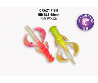 "Crazy Fish Nimble 2.5"" 44-65-13D-6"